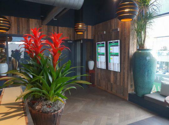 Project Watertuin Spijkenisse, Professioneel, Prijzen, Digitale presentatie